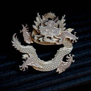 Brosch; Chinese Dragon
